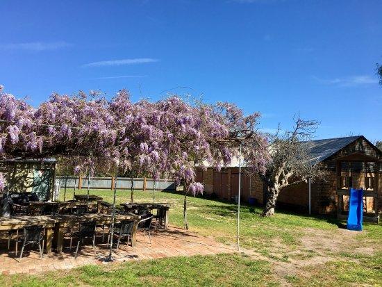 Wangaratta, Australia: The Plough Inn