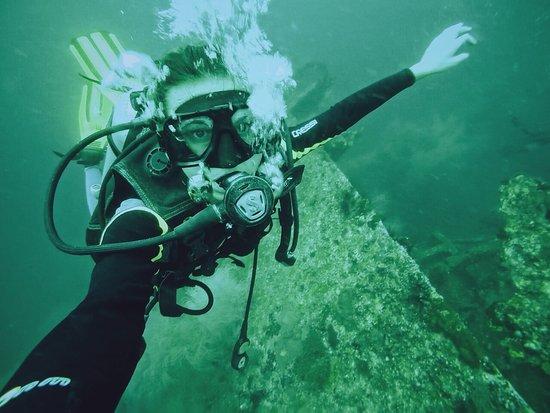 Thresher Shark Divers: photo0.jpg
