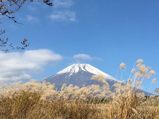 Jurigi Highlands: photo1.jpg
