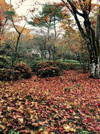 Jurigi Highlands: photo2.jpg