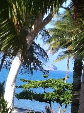 Alassio Palm Cove: view from balcony