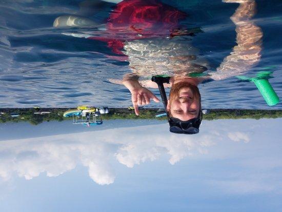 Sea Quest Snorkel Tours: 20171004_094651_large.jpg