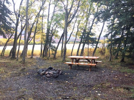 Denali Outdoor Center: View from the front deck of the cabin