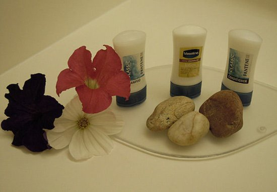 Ukiah, CA: Guest Bathroom Amenities