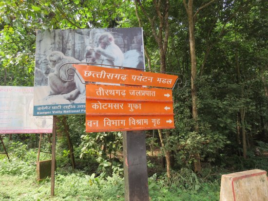 directions picture of kailash and kotumsar cave jagdalpur