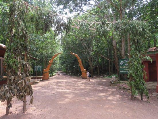 Kailash and Kotumsar Cave: Entrance