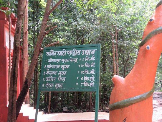 Kailash and Kotumsar Cave: Distances