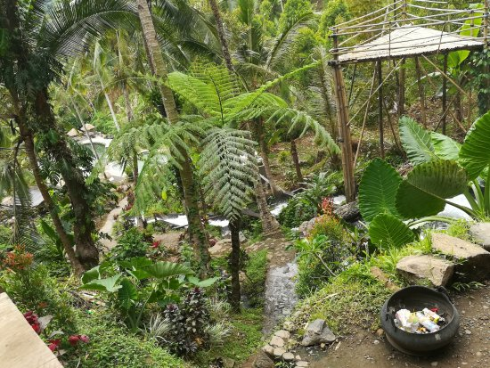 Buleleng, Indonesia: Cascata naturale con piscina d'acqua dolce.