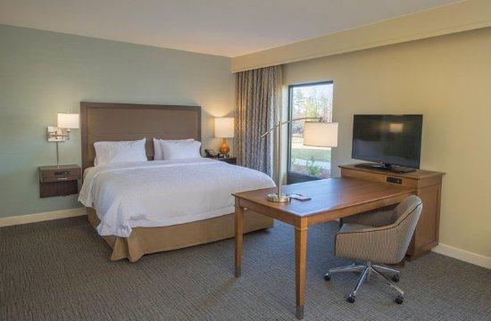 Braselton, GA: King guest room