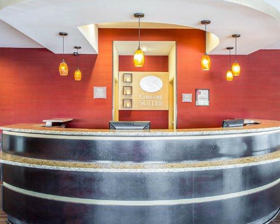 Comfort Suites Rock Hill: Lobby