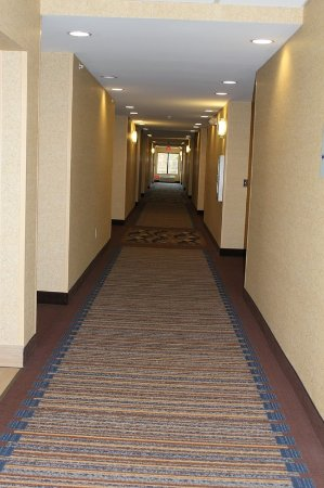 Niles, MI: Hallway