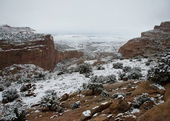 Caineville, UT: view