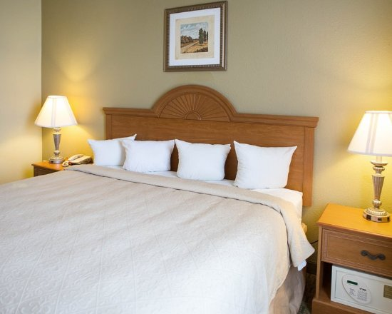 Quality inn suites updated 2017 hotel reviews price for Hotels in la porte tx