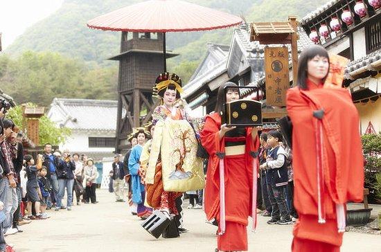 Entrée Nikko Wonderland Edomura et...