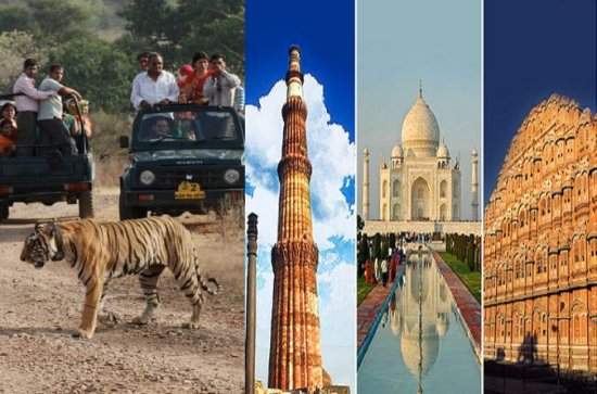 7-Night Private Tour of India's Golden Triangle, Palaces, and Tigers