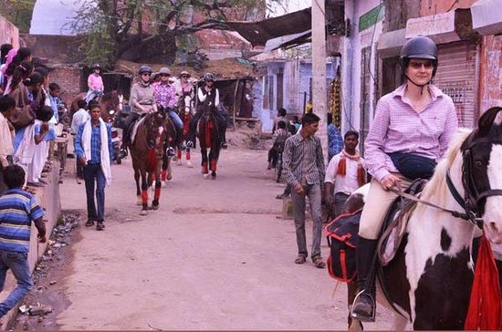 Jaipur Horse Riding Adventure