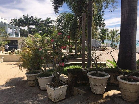 Holetown, Μπαρμπάντος: photo3.jpg
