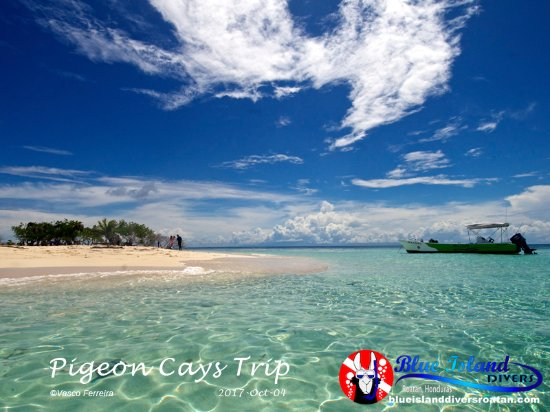 Sandy Bay, Honduras: full day excursion to a remote cay