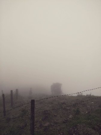 Image result for heavy mist