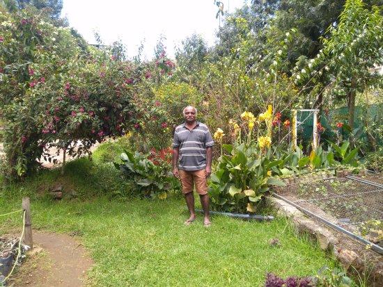 Pine Borough Inn: In the garden