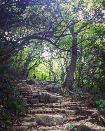 Gwangju, Sydkorea: The hike toward Jungmeorijae Peak