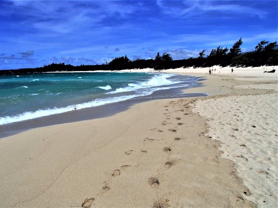 Paia, HI: BALDWIN BCH FROM IMMEDIATELY NTH OF BABY BCH