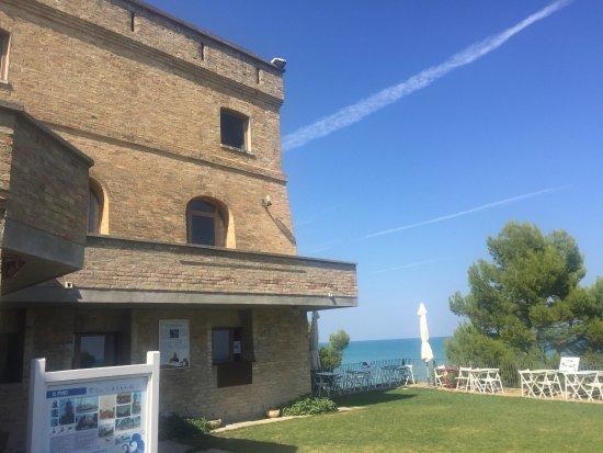 Area Marina Protetta Torre del Cerrano: photo0.jpg