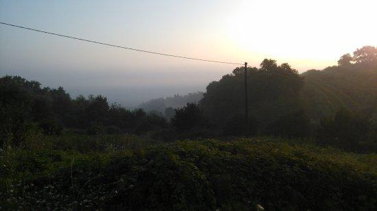 Tenuta il Corno: La mattina a sorgere il sole.