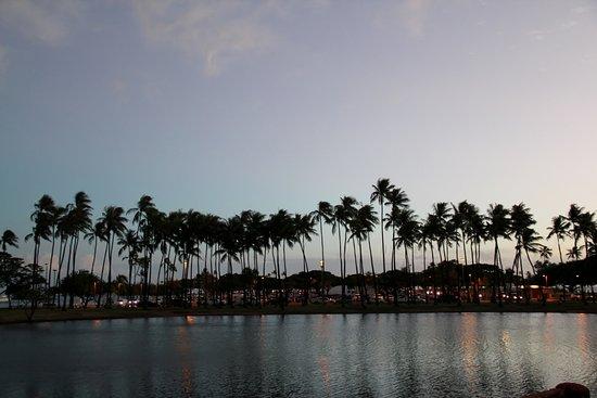 Ala Moana Beach Park Picture
