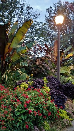 Sunken Gardens: Some of the Plants and flowers