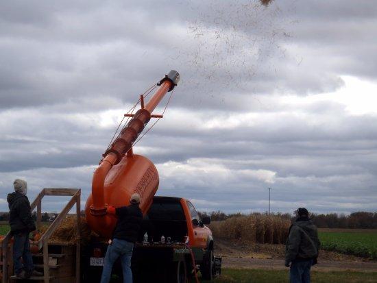 Hampshire, IL: pumpkin chunkin cannon