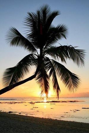 Paradise Cove Lodges: photo2.jpg