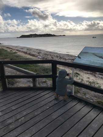Hamelin Bay, ออสเตรเลีย: photo0.jpg