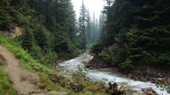 Rogers Pass, Canada: Fluß und Wanderweg