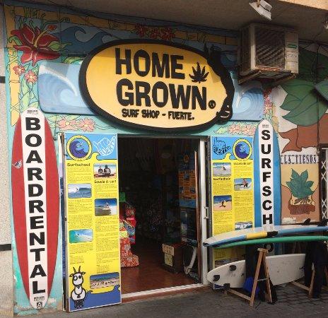 Homegrown Surfschool: Homegrown
