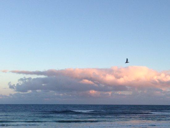 Phillip Island Nature Parks - Penguin Parade: Sunset while we wait