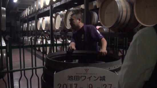 Ikeda-cho, Japon : ワイン貯蔵庫