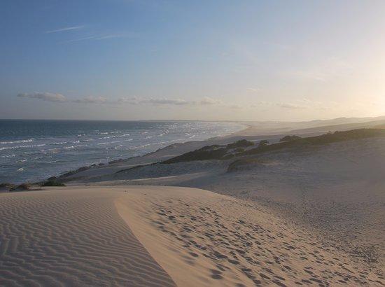 De Hoop Nature Reserve, Νότια Αφρική: Dunes