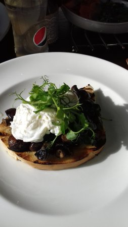 Long Preston, UK: Mushrooms with poached egg on toast