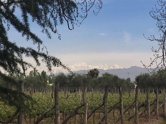 Provincia de Mendoza, Argentina: photo1.jpg
