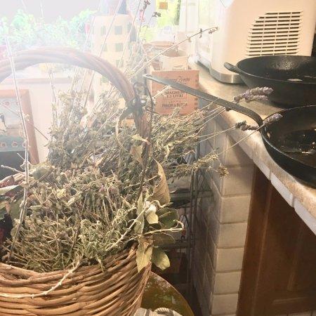 Sicilian Demo Cooking: Fiora's kitchen
