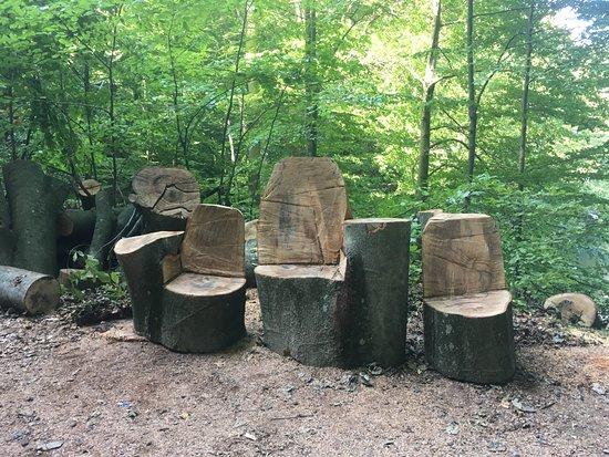 Sobrance, Slovensko: Kedže je na Morskom oku 5 stupeň ochrany, výrub stromov je zakázaný. Príroda je tu nedotknutá.