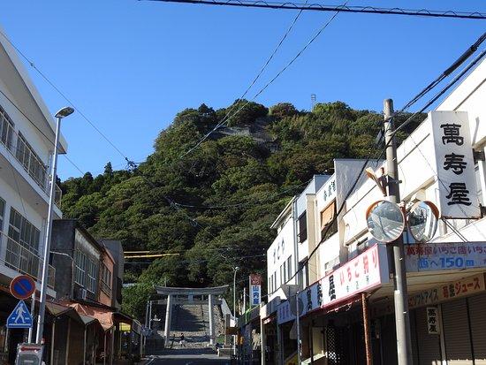 Kunozan Toshogu Shrine : 麓から見上げた山頂
