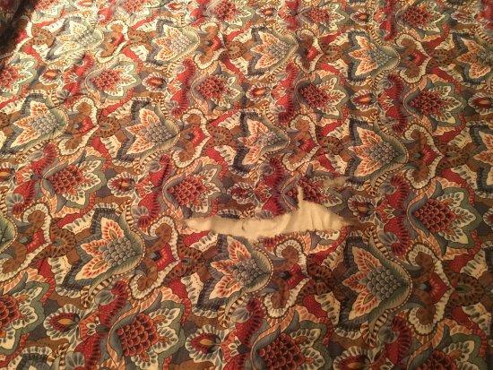 Red Carpet Inn Charlottesville: photo8.jpg