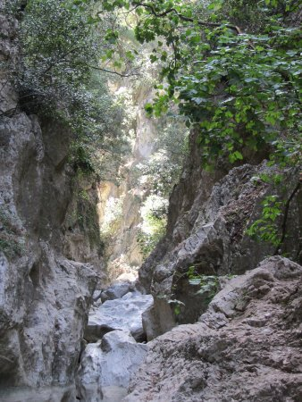 St. Anthony Gorge (Rethymnon, Greece): Top Tips Before You ...