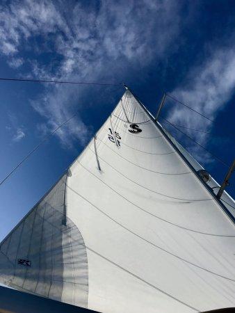 Charleston Sailing Charters: photo1.jpg