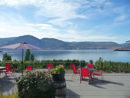 Penticton, Canada: what a view from their patio.