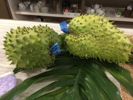 Hamamoto Tropical Fruit World : photo0.jpg