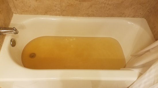 DoubleTree Resort by Hilton Hotel Lancaster: Nasty brown water
