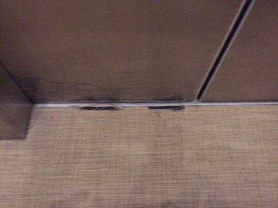 Omni Hilton Head Oceanfront Resort: North tower elevator carpet torn at the elevator door entrance creating Tripping hazard.